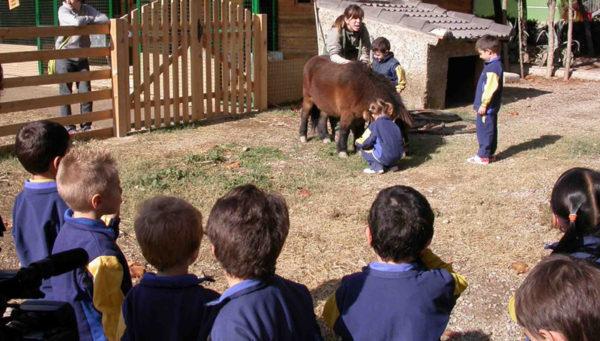 Actividades con escolares en Torrevirreina